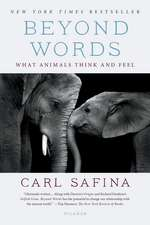 Beyond Words