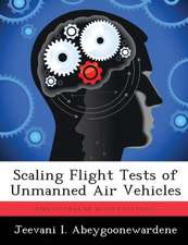 Scaling Flight Tests of Unmanned Air Vehicles