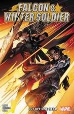 Falcon & Winter Soldier Vol. 1