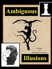 Ambiguous Illusions