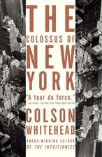 The Colossus of New York:  Stories of Men in Trouble