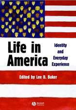 Life in America: Identity and Everyday Experience