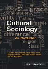 Cultural Sociology: An Introduction
