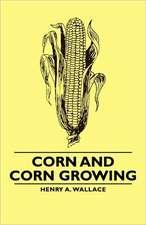 Corn and Corn Growing