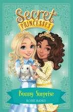 Secret Princesses: Bunny Surprise