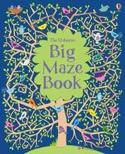 The Usborne Big Maze Book