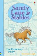 Sandy Lane Stables - The Runaway Pony