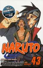 Naruto, Vol. 43: The Man with the Truth