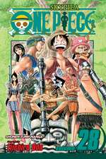 One Piece, Vol. 28