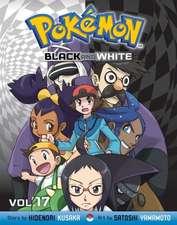 Pokémon Black and White, Vol. 17