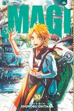 Magi, Vol. 30: The Labyrinth of Magic