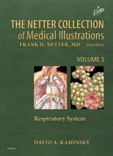 The Netter Collection of Medical Illustrations: Respiratory System: Volume 3
