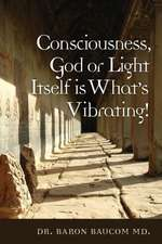 Consciousness, God or Light Itself Is What's Vibrating!:  How the Bible Reveals Reincarnation