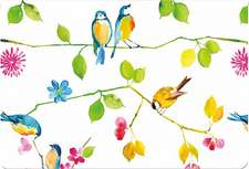 Watercolor Birds Note Cards: Stationery