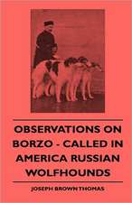 Observations On Borzoi - Called In America Russian Wolfhounds