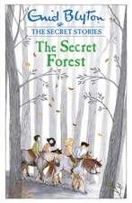 Secret Stories: The Secret Forest