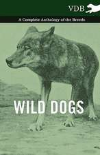 Wild Dogs - A Complete Anthology of the Breeds