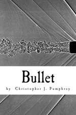 Bullet:  Joe's Hidden Treasure