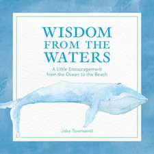 Wisdom from the Waters: A Little Encouragement from the Ocean to the Beach