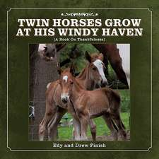 Twin Horses Grow at His Windy Haven