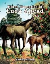 Horse Memories of Luck Ahead