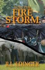 Into the Fire Storm:  A Private Investigator Andrew Knight Mystery