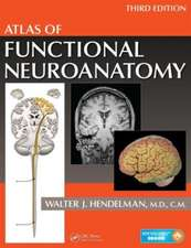 Atlas of Functional Neuroanatomy, Third Edition:  Principles and Practice