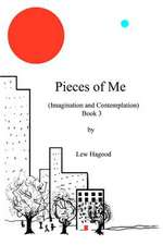 Pieces of Me (Imagination and Contemplation)