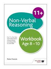 Non-Verbal Reasoning Workbook