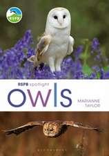RSPB Spotlight Owls