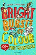 Bright Bursts of Colour