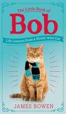 Bowen, J: Little Book of Bob
