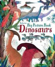 Cowan, L: Big Picture Book of Dinosaurs