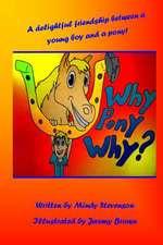 Why Pony Why