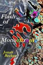 Flash of Monochrome:  Bible Study Guide
