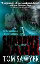 Shadows in the Dark