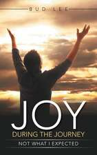 Joy During the Journey