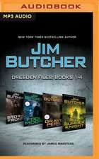 Jim Butcher - Dresden Files:  Storm Front, Fool Moon, Grave Peril, Summer Knight
