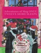 Adventures of Meg Only Twelve More Sleeps