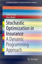 Stochastic Optimization in Insurance: A Dynamic Programming Approach