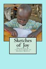 Sketches of Joy
