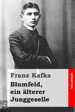 Blumfeld, Ein Alterer Junggeselle