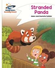 Reading and English - Stranded Panda - White: Comet Street Kids