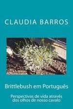 Brittlebush Em Portugues