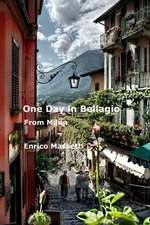 One Day in Bellagio from Milan