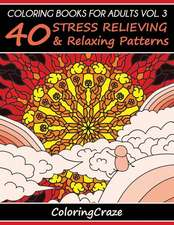 Coloring Books for Adults Volume 3: 40 Stress Relieving and Relaxing Patterns