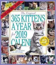 365 Kittens-A-Year Picture-A-Day Wall Calendar 2019