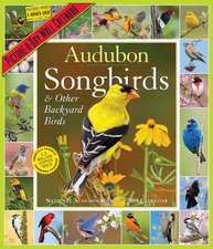 Audubon Songbirds and Other Backyard Birds Picture-A-Day Calendar 2019