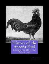 History of the Ancona Fowl