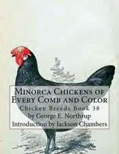 Minorca Chickens of Every Comb and Color